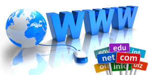 domain-name-registration-portfolio